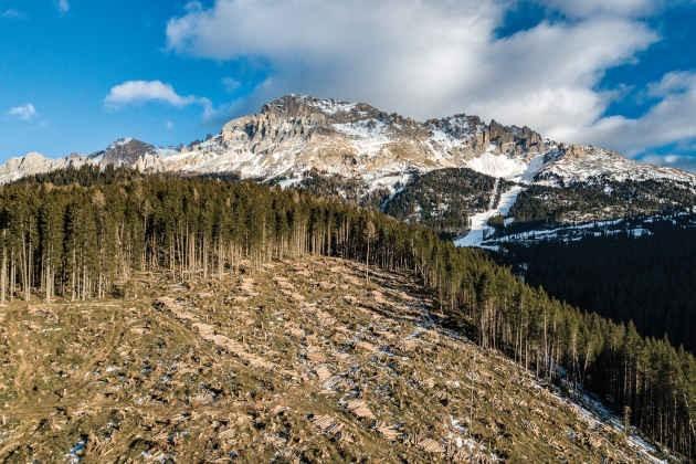 i danni che il ciclone Vaia ha lasciato lungo i versanti montani