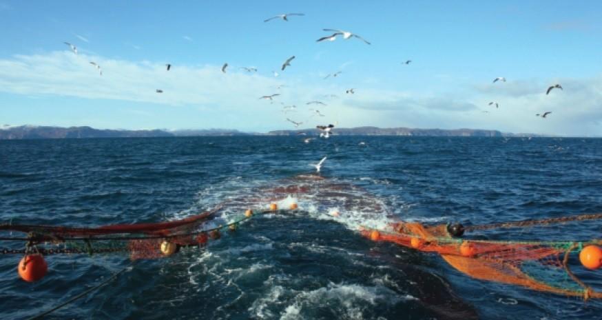 foto di una rete da pesca in mare
