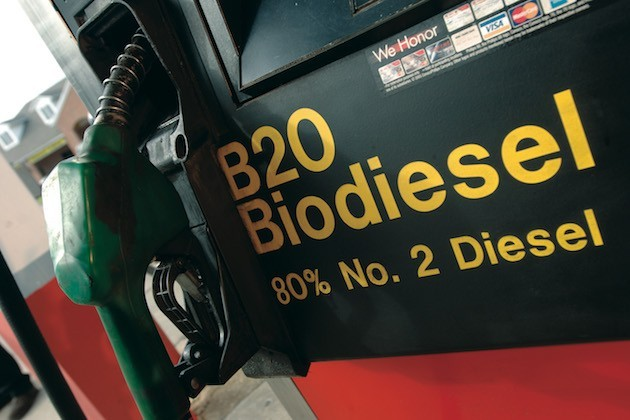 L'immagine di una pompa di benzina che eroga biodiesel