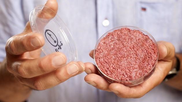 immagine di un recipiente contenente carne creata in laboratorio