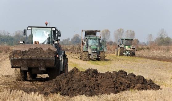 foto di fanghi in agricoltura