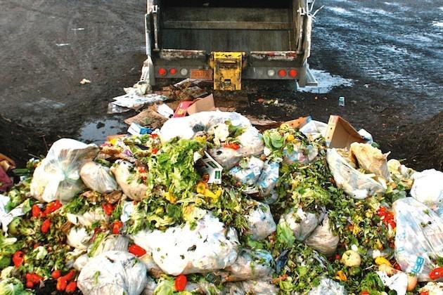L'immagine di cibo finito nella spazzatura