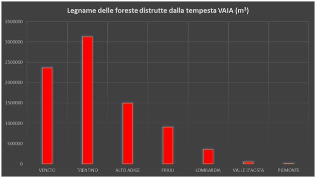 I Danni Inflitti Alle Foreste Dalla Tempesta Vaia Per Regioni E Province Autonome