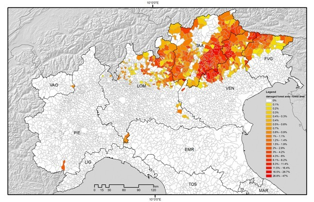 Una mappa delle foreste distrutte dalla tempesta Vaia