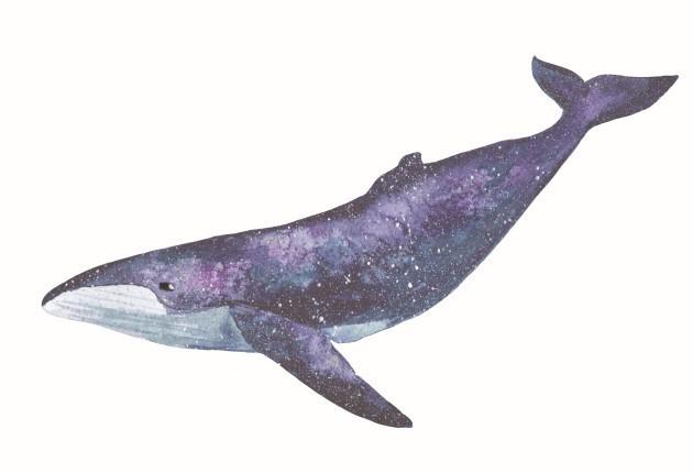 balena anti CO2