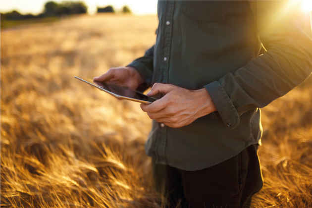 L'immagine di un agricoltore con un laptop in un campo di grano