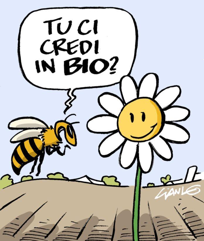 vignetta sul biologico di Gianlorenzo Ingrami