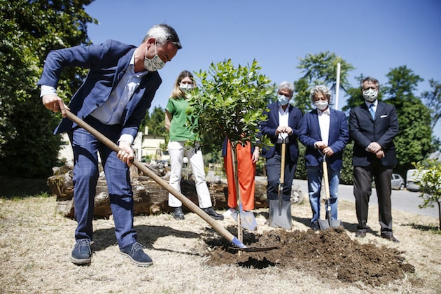 Raccolta fondi ambiente Legambiente
